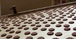Industrial manufacturing facilities for breakfast chocolate biscuits